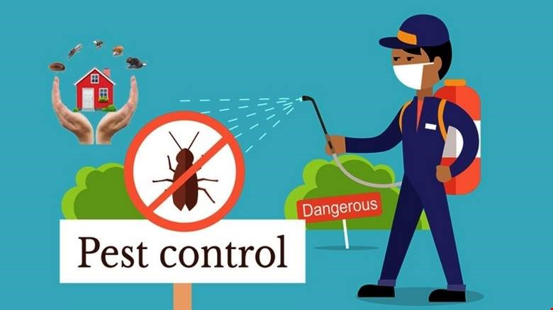Effective and Timely Pest Control Measures Can Improve Operations in your Business Premises