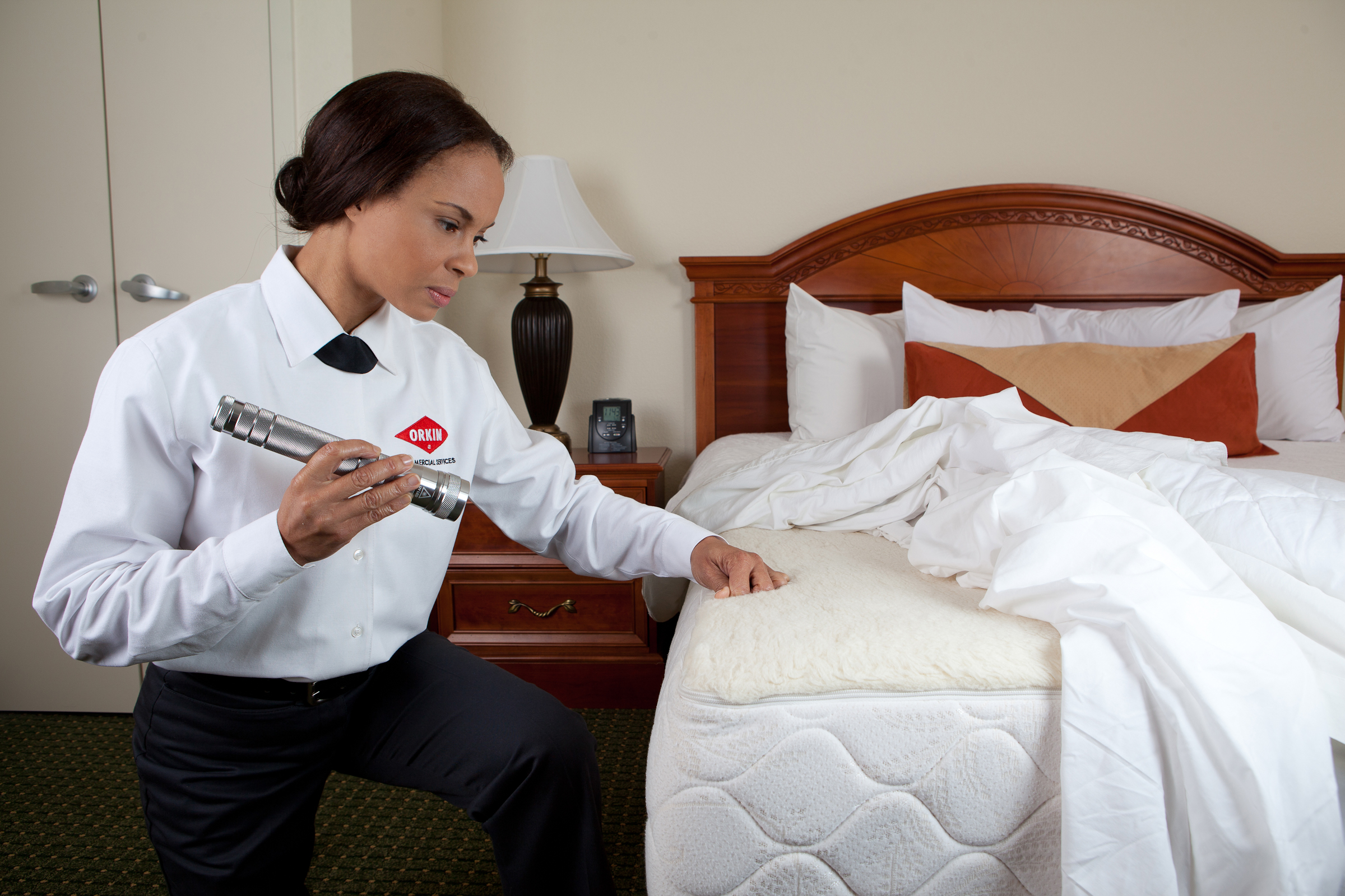 Tips for Pest Control in Hospitality